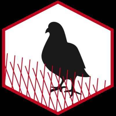 Taubenschutz - Installation von Taubenabwehrsystemen
